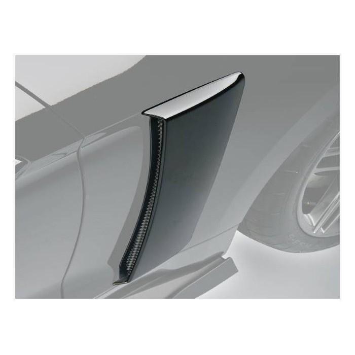 Ecopes latérales d'aile arrière Roush 421870