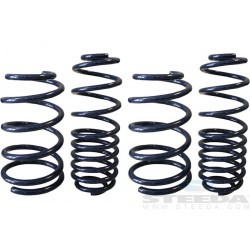 Ressorts de suspension Steeda 555-8215