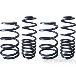 Ressorts de suspension Steeda 555-8215