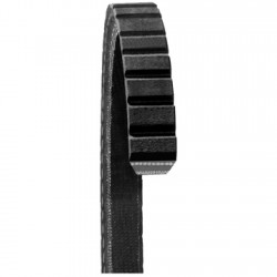 Courroie d'accessoires Dayco 15445